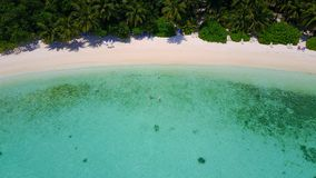 P02429 Aerial flying drone view of Maldives white sandy beach on sunny tropical paradise island with aqua blue sky sea Stock Photos