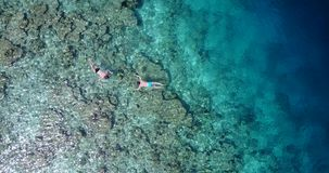 Aerial flying drone view of Maldives white sandy beach young people snorkeling swimming underwater on sunny. Tropical paradise island with aqua blue sky sea Stock Photography