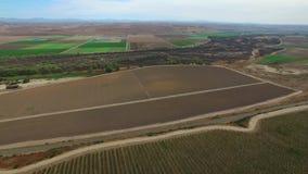 Aerial flyover grape farms in California stock video