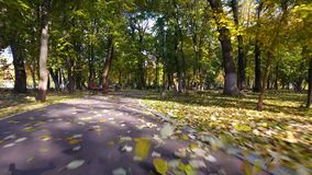 Aerial footage of autumnal nature scenery in city park stock footage