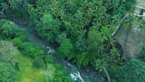 Aerial footage of the beautiful landscape of waterfall, rocks, forest, mountain river on Bali Indonesia 4k travel world. Aerial footage of the beautiful stock footage