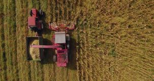 Aerial footage of corn harvest with combine and tractor on a fieldon a field stock video footage