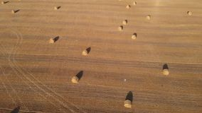 Aerial footage of a field with round bales of straw. Top-down camera movement stock video