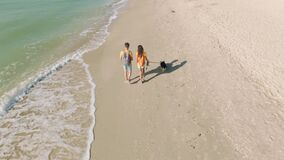 Aerial footage of happy couple with dog walking sea beach