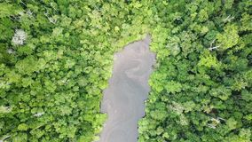 Aerial Footage of Marine Lake and Rainforest in Raja Ampat. A narrow marine lake is surrounded by thick jungle on a remote island in Raja Ampat, Indonesia. This stock footage