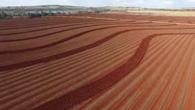 Aerial footage red soil farm plowing