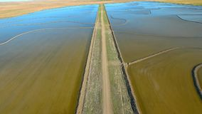 Aerial footage of Rice Growing NSW stock video