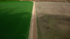 Road between yellow and green field. Aerial footage road between yellow and green field stock video