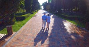 Aerial footage of senior couple walking outdoors in park stock video footage