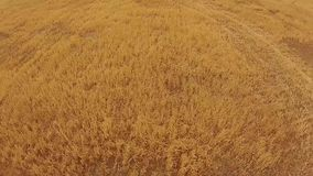 Aerial footage of silo on rural farm stock video footage