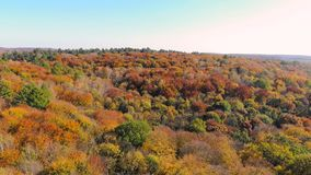 Aerial Footage View. Colored autumn trees. Flight over autumn mountains with forests, meadows and hills in sunset soft