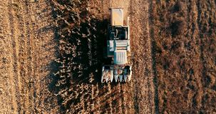 Aerial footage, view of combine harvester and details of autumn harvest of corn field stock footage