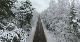 Aerial footage of winter road through the forest stock video