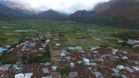 Aerial footages Rice Terrace in Sembalun Villages stock video footage