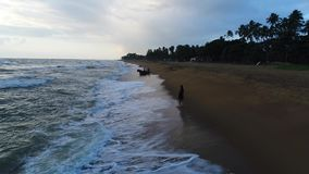 Aerial of the girl who walks along at the sandy beach at sunset in Sri Lanka. A girl walks at sunset on the sandy beach with palm trees washed by sea waves at stock video