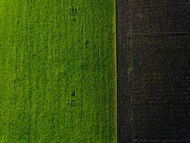 Aerial green field. stock photography