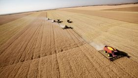 Aerial Harvest Landscape Royalty Free Stock Photo