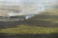 Aerial helicopter view of lava field near Kilauea volcano, Big Island, Hawaii Stock Photo