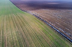 Aerial image of agricultural fields. Aerial view of agricultural green and brown fields in perspective, shoot from drone in winter time Stock Image