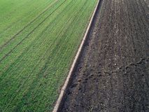 Aerial image of agricultural fields. Aerial view of agricultural green and brown fields in perspective, shoot from drone in winter time Royalty Free Stock Photos