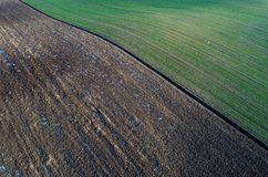 Aerial image of agricultural fields. Aerial view of agricultural green and brown fields in perspective, shoot from drone in winter time Royalty Free Stock Photo