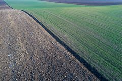 Aerial image of agricultural fields. Aerial view of agricultural green and brown fields in perspective, shoot from drone in winter time Royalty Free Stock Image
