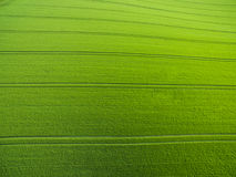 Aerial image of a lush green filed Royalty Free Stock Photography