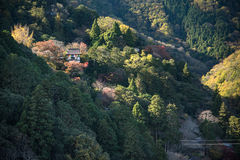 Aerial image, mountain of Arashiyama, famous tourist destination Royalty Free Stock Photo