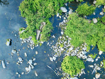 Aerial image of river and trees. Royalty Free Stock Images