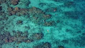 Aerial Image of Snorkelers and Caribbean Coral Reef. An aerial view of the barrier reef along Turneffe Atoll in Belize reveals spur and groove channels that stock video