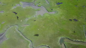 Aerial Image of Wetland Habitat. Narrow channels wind through a marsh on Cape Cod, Massachusetts. Marshes and wetlands provide flood and erosion control and stock video footage