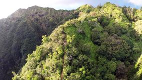 Aerial of Kuliouou Ridge Hiking Trail stock video