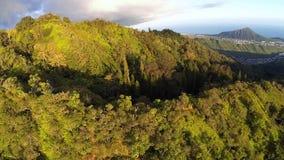 Aerial of Kuliouou Ridge Hiking Trail stock footage