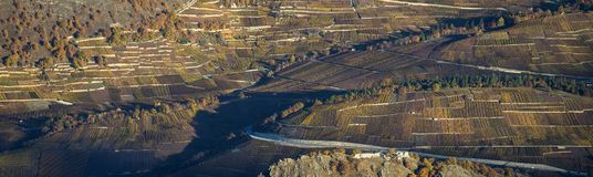 Aerial landscape of the north side of the Rhone River, showing v royalty free stock photo