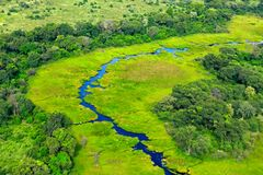 Aerial landscape in Okavango delta, Botswana. Lakes and rivers, view from airplane. Green vegetation in South Africa. Trees with w