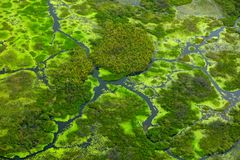 Aerial landscape in Okavango delta, Botswana. Lakes and rivers, view from airplane, UNESCO World Heritage site in South Africa. Gr Stock Photo