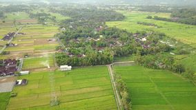 Aerial landscape of paddy fields and village. Beautiful aerial landscape footage of paddy fields and village in misty morning at Yogyakarta, Indonesia. Shot in stock video footage