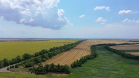 Aerial of a landscape with a sunflower and wheat fields.