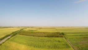 Aerial landscape of various crops with motorcycle passing by on the road, rotating view to the right for some 140 degrees. stock footage