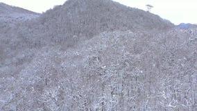Aerial landscape view of Caucasus Mountains in Gorky Gorod ski and snowboard resort, Sochi, Russia. Aerial landscape view of Caucasus Mountains in Gorky Gorod stock video footage