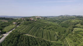 AERIAL: Landscape of a wine country stock footage