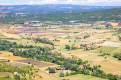 Aerial the lavender fields in Provence, France Royalty Free Stock Photos
