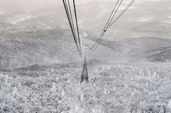 Aerial lift pylon erected from snow covered pine forest in Mt. H Stock Image