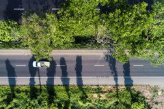Aerial look down view of road path through the tree stock photography