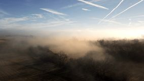 Aerial misty morning landscape, tree in sunbeam mist. Aerial misty morning landscape with sun beam over tree in countryside stock video