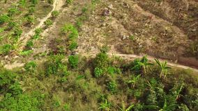 Aerial: Motocross rider driving bike on a dirt pathway going up to mountain. Aerial: Motocross rider driving riding bike uphill on a small dirt pathway going up stock video footage