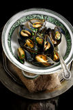 Aerial Mussels Stock Image