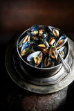 Aerial Mussels II Royalty Free Stock Photography