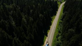 Aerial old truck moves in the pine forest stock footage