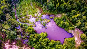 Aerial over pond and forest Stock Photography